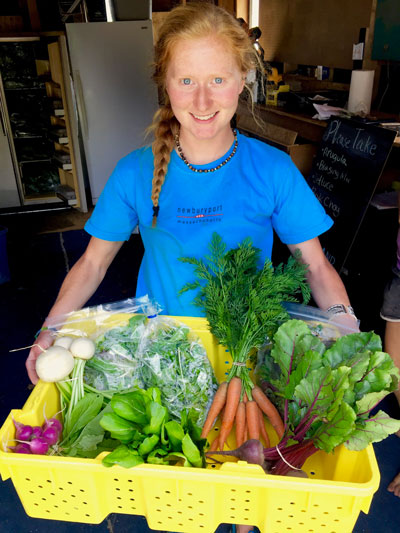 wily-carrot-csa-community-supported-agriculture-mancos-colorado